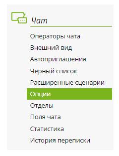 """левое меню """"Опции"""""""